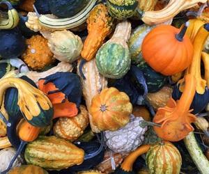 autumn, autumnal, and chocolate image