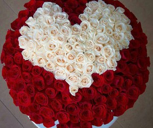 rose and heart image