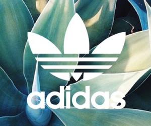 adidas, background, and cool image