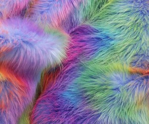 aesthetic and fur image