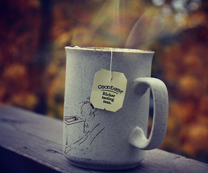 autumn and drink image