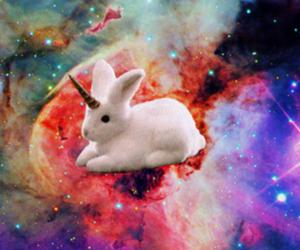 unicorn, bunny, and cute image