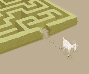instinct and logic image