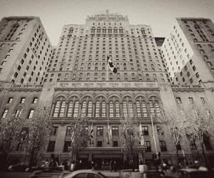 photography, toronto, and royal york image