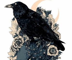 crow, art, and skull image