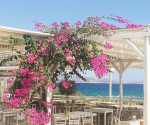 flowers, sea, and mykonos image