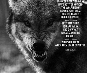 fitness, quote, and wolf image