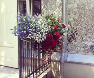 balcony, flowers, and lodz image
