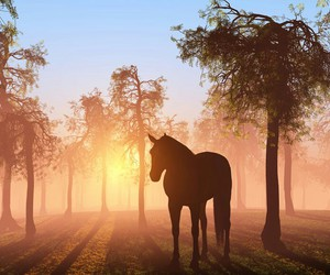 horse and tree image