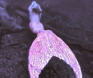 mermaid, pink, and grunge image