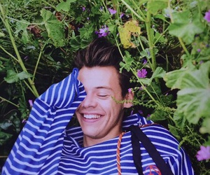 flowers, lovely, and Harry Styles image