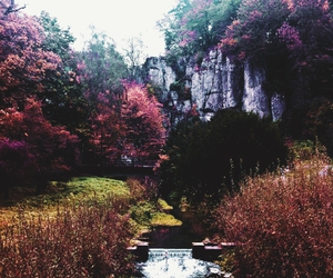 autumn, fall, and rock image