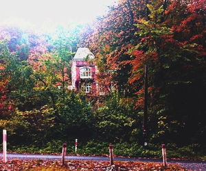 autumn, building, and fall image