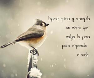 frases, vida, and viento image