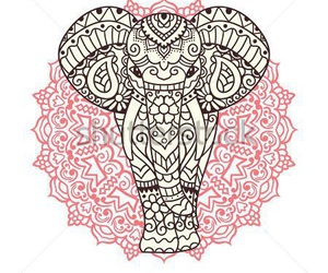 art, elefante, and mandala image