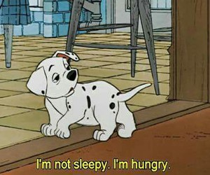 quotes, hungry, and 101 dalmatians image