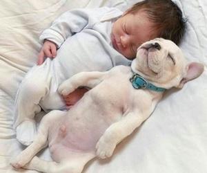 baby, child, and dog image