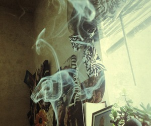 hippie, incense, and plants image