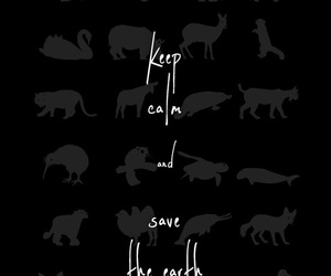 quote, black, and wallpaper image