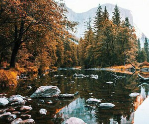 autumn, leaves, and river image
