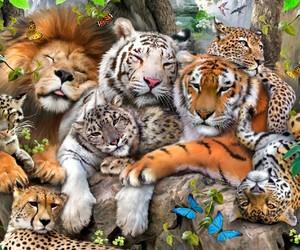 art, baby animals, and big cats image