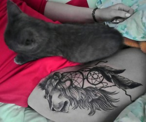 cat, lion, and tattooed girl image