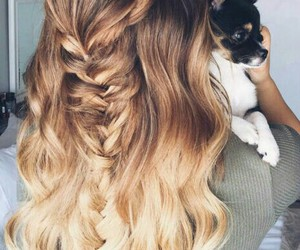 hair, dog, and hairstyle image