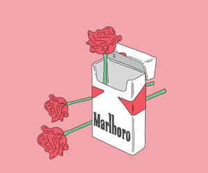 rose, marlboro, and cigarette image