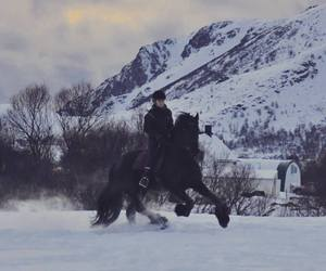horse, norway, and riding image