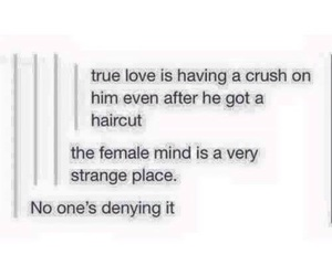 funny, tumblr, and crush image