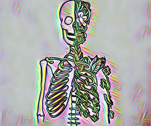 3d, background, and bones image