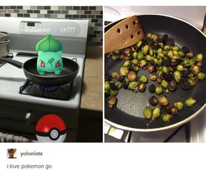 food, pokemon, and stop pokemon abuse image