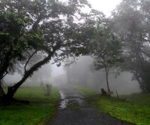 dark, day, and rain image