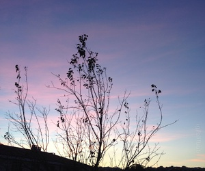 alternative, autumn, and blue image