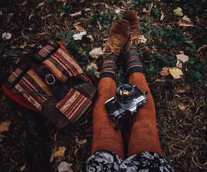autumn, grass, and orange image