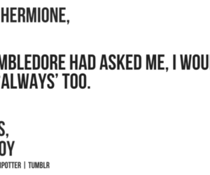 dramione, harry potter, and draco image
