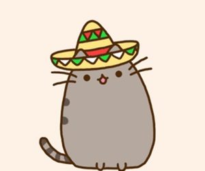 cat, pusheen, and mexican image