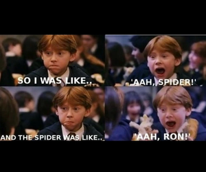 harry potter, spider, and ron weasley image