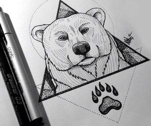 bear, drawing, and animal image