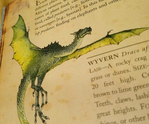 books, dragon, and green image