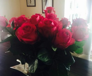 roses, spring, and love image