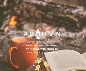 autumn, fall, and book image