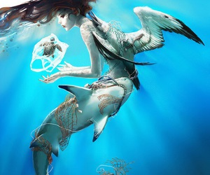 mermaid, art, and shark image