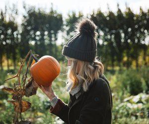 zoella, autumn, and pumpkin image