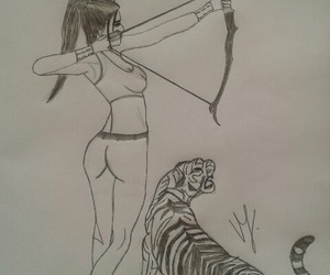 archery, tiger, and arrow image