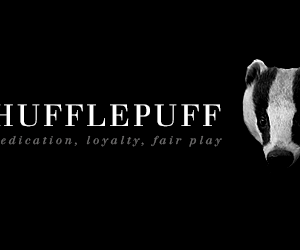 harry potter, hufflepuff, and hp image