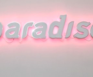 paradise, pink, and pale image