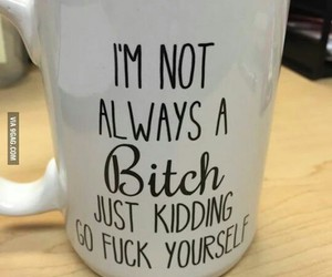 bitch, funny, and mug image