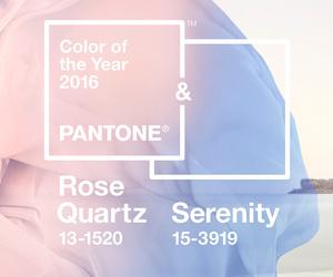 color, fashion, and pantone image