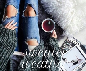 cold, comfy, and cozy image